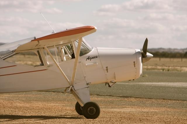 Agnes, our gliding tow plane!